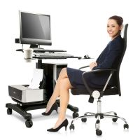 Sit Stand Workstation w/ Wheels & Cable Manager